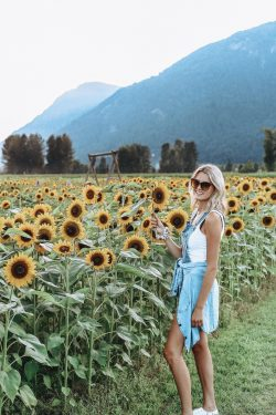 vancouver blogger
